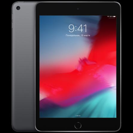 iPad mini 256Gb Wi-Fi Space Gray